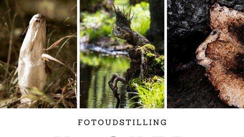 Fernisering  i Sognegården torsdag d. 10. december 2020  kl. 17.00. Naturfotograf Christine Louw viser udstillingen