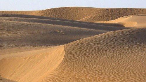 Der Wüstenwanderer