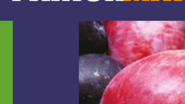 Parish Matters Autumn issue out now