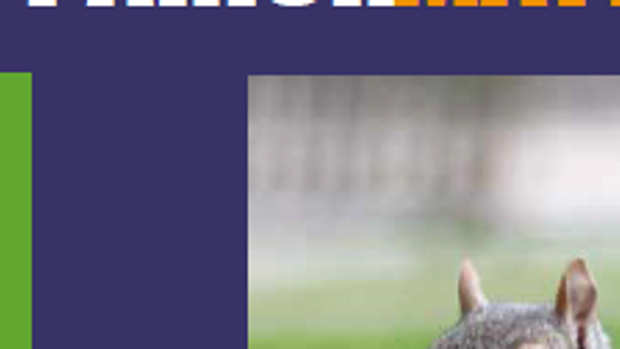Parish Matters Summer issue out now