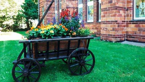 Neues Leben im alten Garten – der Johannesgarten