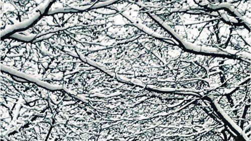 NYT KIRKEBLAD Vinter 2018