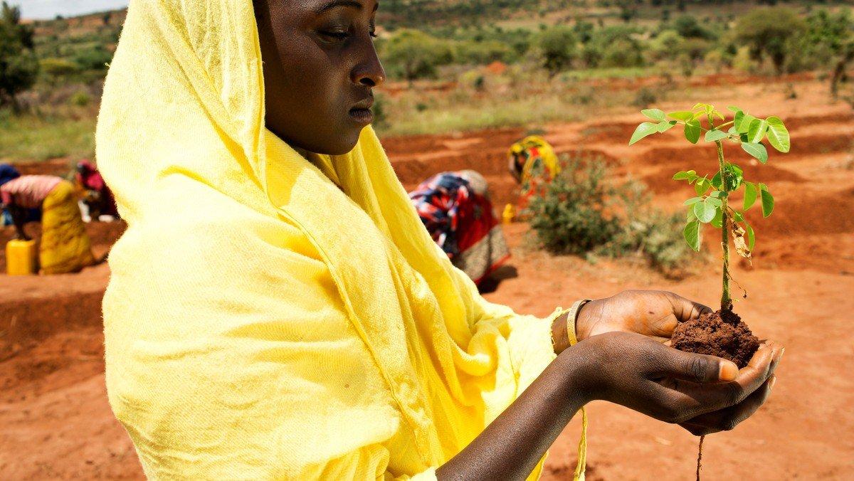 Folkekirkens Nødhjælp: Sogneindsamling til verdens fattigste søndag 10. marts