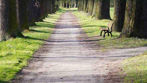 Auf dem Paul-Gerhardt-Wanderweg