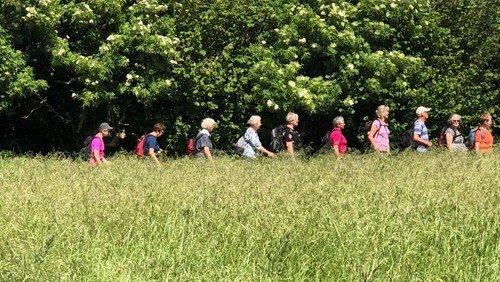 Pilgrimsvandring på en dejlig solskinssøndag