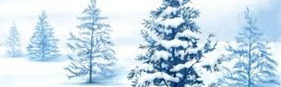 Fredagsklubben i Allehelgens kirkes krypt fredag den 13. december kl. 14.00 ved Janne Nyborg