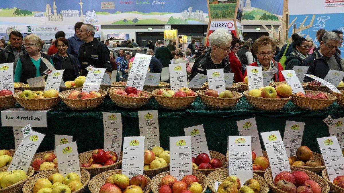 Berliner Tafel sammelt 11 Tonnen Lebensmittel auf der Grünen Woche