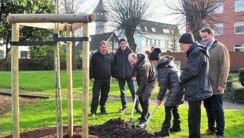 Ein Baum für Wittenberg