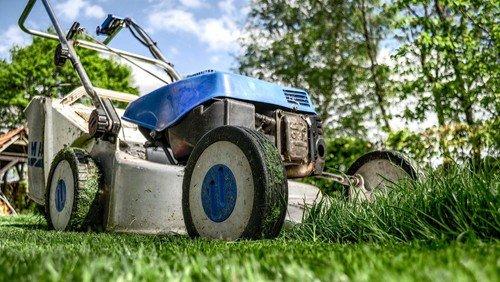 Weiterhin ehrenamtliche Gartenarbeiter*innen gesucht!