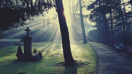 Berliner Friedhofsverband öffnet wieder ab Donnerstag