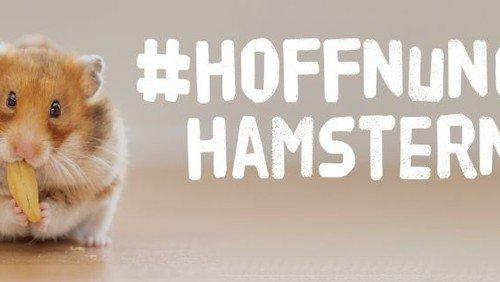"Am Ostersonntag: ""Hoffnung Hamstern"" an der Friedenskirche"