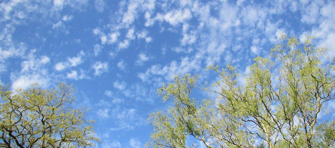 Prædiken mellem himmelfart og pinse