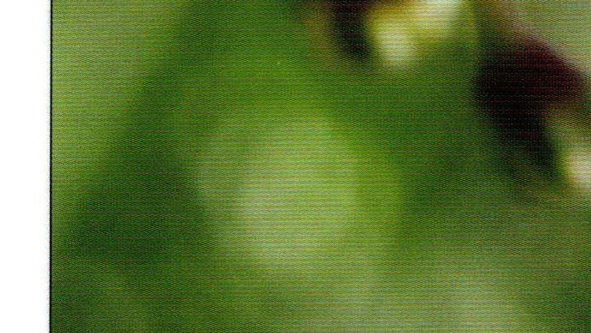 135949_Kirkebladet nr 2-19_korr