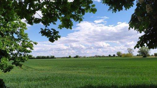 Sommer-Ferien-Gruß: Das Land ist hell und weit...