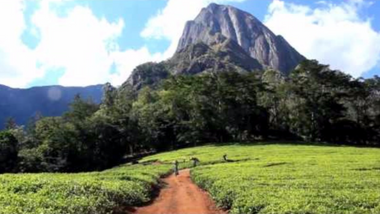 Fundraiser for Mulanje Mission Hospital, Thursday  30th July 4:30pm on Zoom