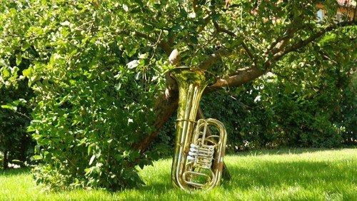 Musik tut Gutes - Eine Aktion der EKBO