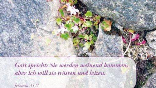 28. Evangelischer Gemeindebrief