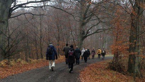 Pilgrimsvandringer i efteråret 2020