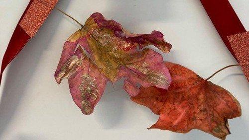 Hurrra, hurra, der Herbst ist da!