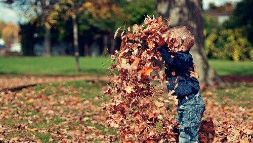 Lustige Herbstmelancholie