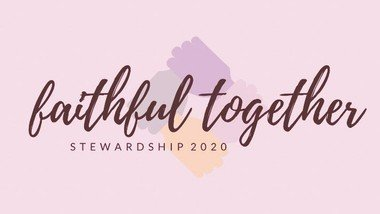 Our 2020  Stewardship  Programme. Read the latest newsletter.