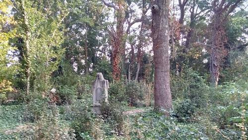 Arbeitseinsätze auf dem Friedhof