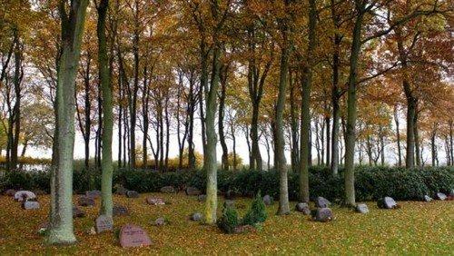 Brev til brugere af skovkirkegården