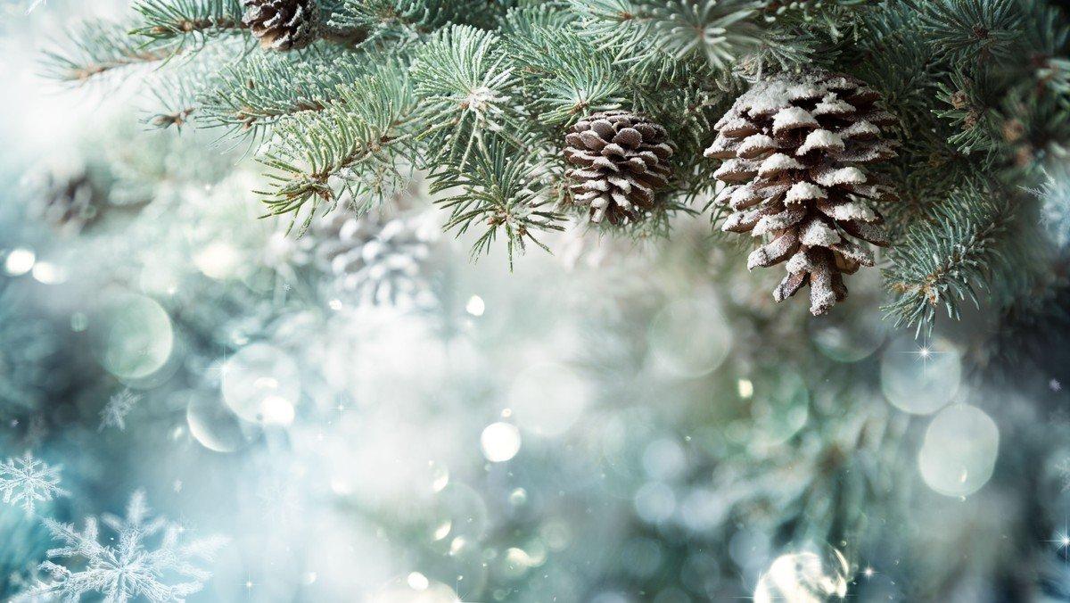 Vi synger julen ind - torsdag 3. dec. kl. 10.30
