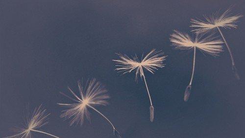 Ein kleines Licht - Gedenkandacht für verstorbene Kinder am 13. Dezember