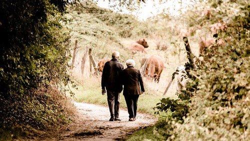 Begleiteter Spaziergang -
