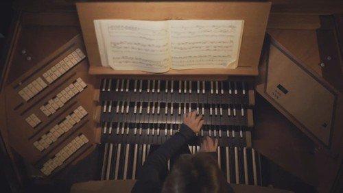 Unsere Orgel des Jahres