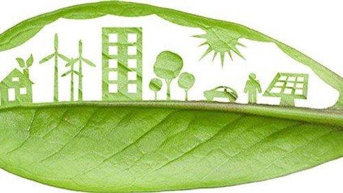 Lent Eco-Challenge
