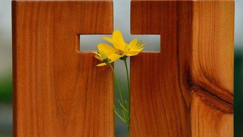 Passionszeit - Angebote im Kirchenkreis