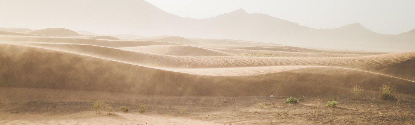 Måske skal der en ørkenvandring til