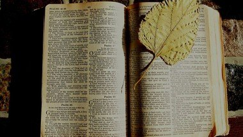 Læs søndagens prædiken v. Christian Gottlieb