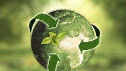 Eco-Challenge Blog