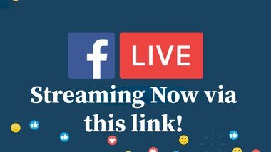 Watch the recent Livestreams here!