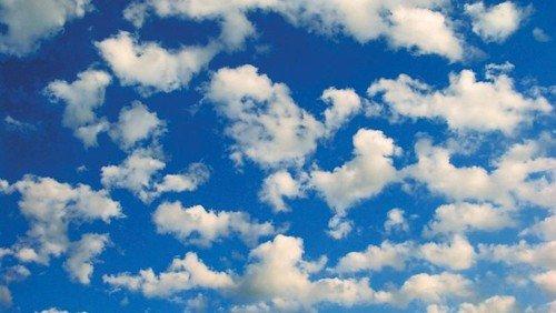 Leben in der Cloud Gottes - Palmsonntag 2021