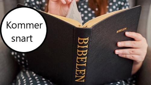 Bibelmaraton - starter 27. maj