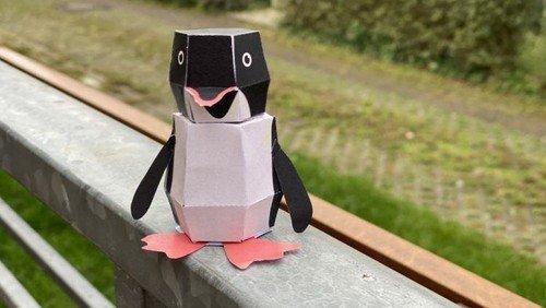 Jungschar-Aktionen 2021; Camp-Feuer + Pinguin