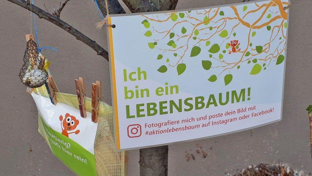 """""""Ein wenig Buntheit in dieser trüben Zeit"""" - Stimmen zur Osteraktion """"Lebensbäume"""""""