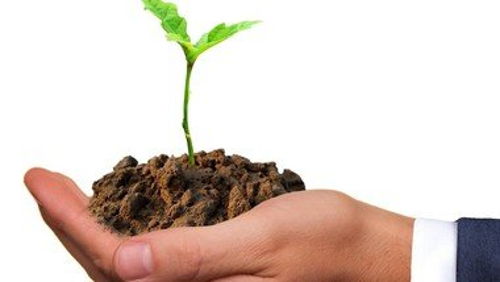 Diakonische Unternehmen wollen mehr für den Klimaschutz tun