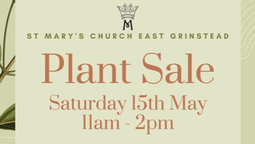 St Mary's Church Plant Sale