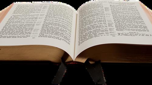 Ökumenische Bibelwoche der Arbeitsgemeinschaft christlicher Kirchen in Potsdam