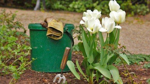 Ermunterung für Garten- und Naturliebhaber:innen
