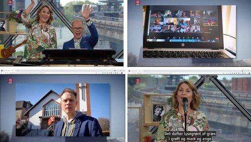 Toronto Zoom-coffee group on Danish television