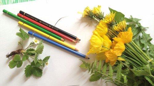 Blomstertegninger til kirkerne