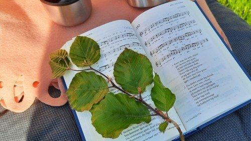 Sommersang i præstegårdshaven