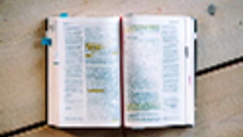 Bibel für Neugierige!