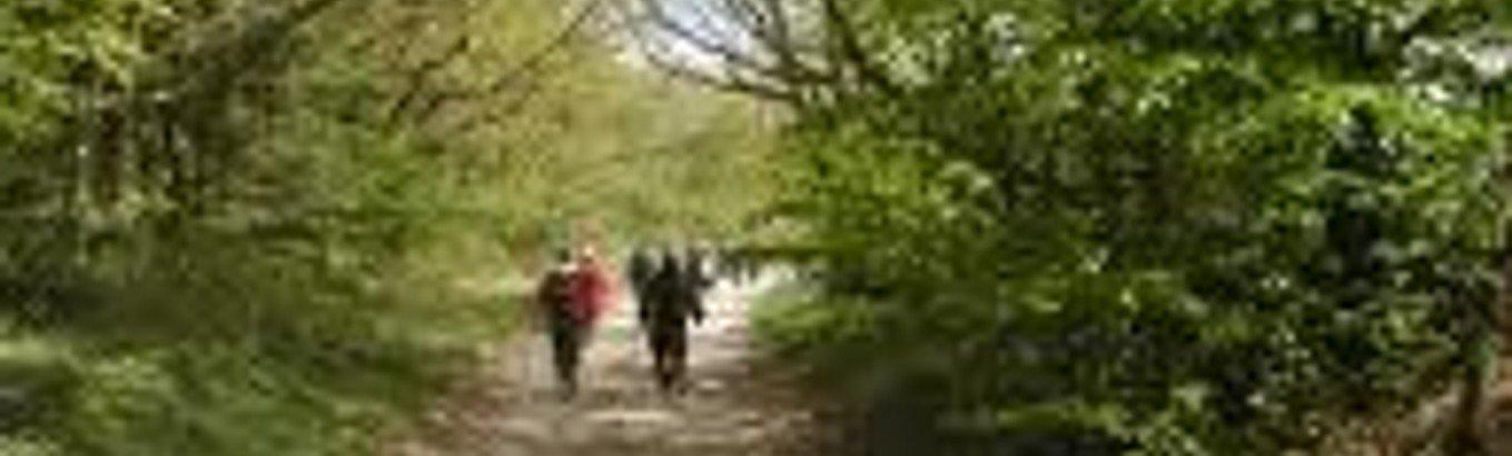 Pilgrimsvandring i Jammerbugt - nu med link til indslag på Dit LokalTV